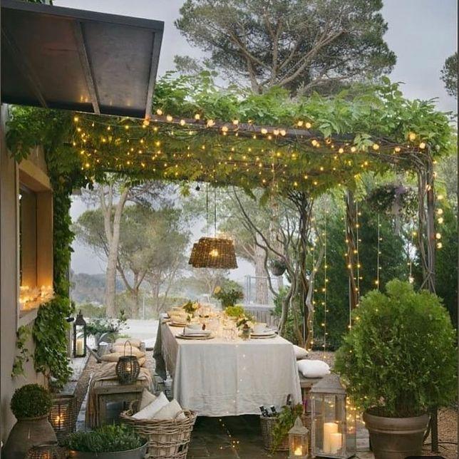 Pomysły na oświetlenie w ogrodzie. Jak je odpowiednio dobrać?