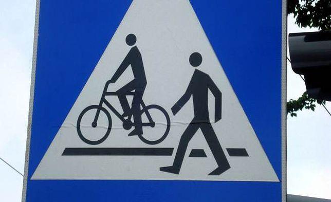 W Gdyni powstaną nowe drogi dla rowerów
