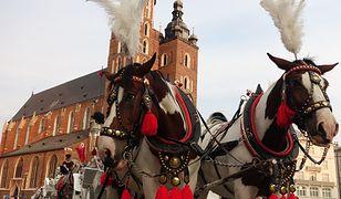 Kraków. Konie zniknęły z rynku