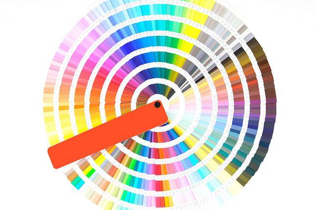 Najbrzydszy kolor świata