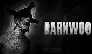 """Grafika z gry """"Darkwood"""""""