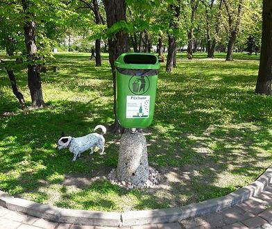 """""""Psie WC"""". W stolicy stanęły toalety dla psów"""