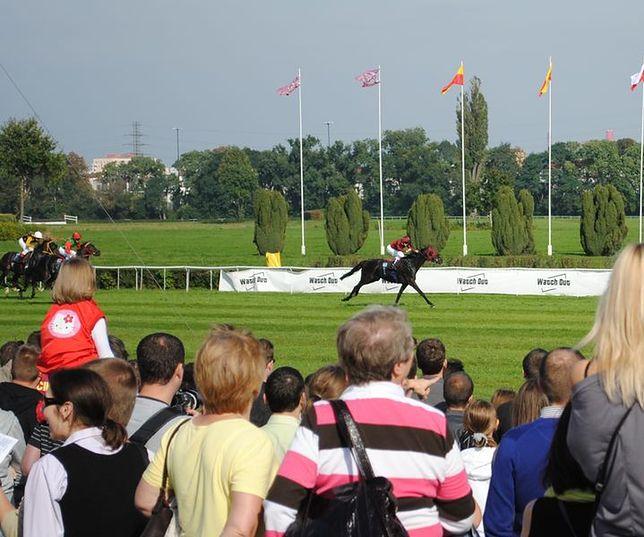 W sobotę startuje służewiecki sezon wyścigów konnych