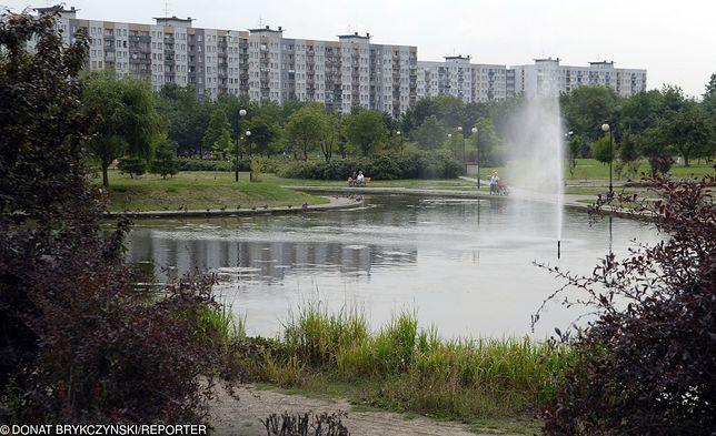 Park Bródnowski w Warszawie