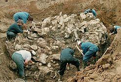 Zniszczyli dokumenty ws. masakry w Srebrenicy?