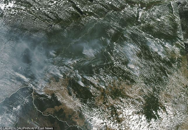 Ekologiczny koniec świata. Płoną lasy w Amazonii. Tylko one chronią nas przed drastyczną zmianą klimatu