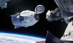 SpaceX. Starlink może być prawdziwą żyłą złota