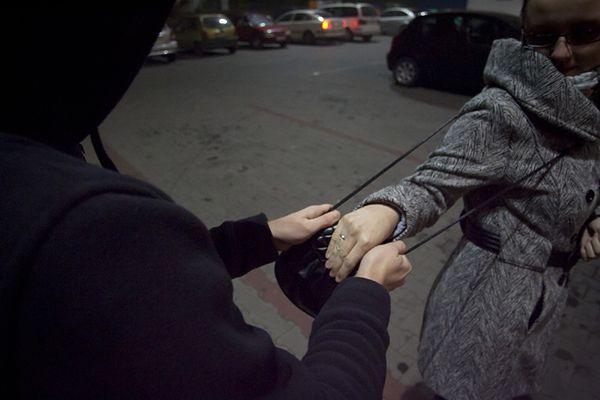 Puccy policjanci zatrzymali zbyt dokładną gosposię. Wysprzątała nawet szafy pracodawców