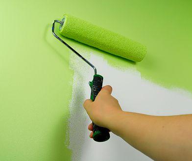 Jaki wałek do malowania ścian i sufitów wybrać?
