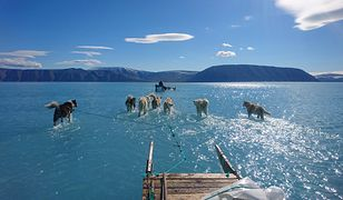Mroźne morze na Grenlandii zaczyna się rozpouszczać