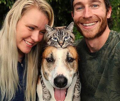 Zdjęcia pary zwierzaków są naprawdę urocze