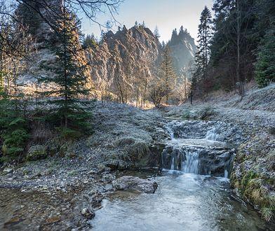 Niesamowite rezerwaty przyrody w Polsce. Doskonały cel jednodniowych wypraw