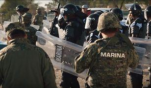 Służby specjalne polują na meksykańskich poławiaczy totoab.