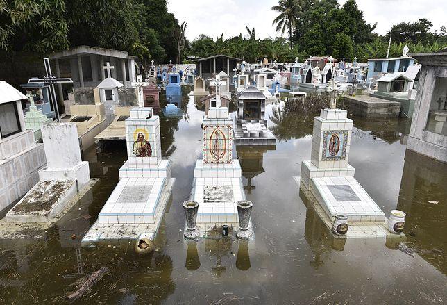Alpy. Zwłoki wymyte z cmentarzy podczas powodzi we Włoszech i Francji
