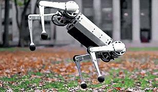 Robot Mini Cheetah