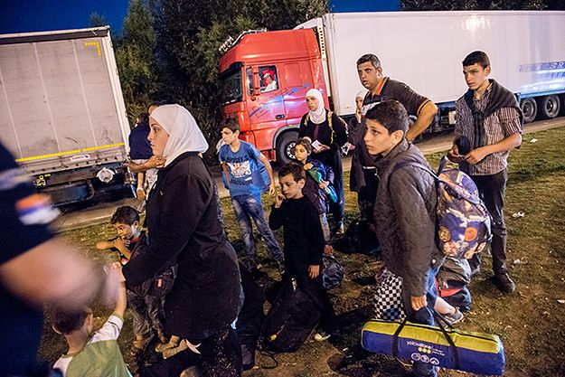 Uchodźcy z Syrii zatrzymani na granicy serbsko-węgierskiej