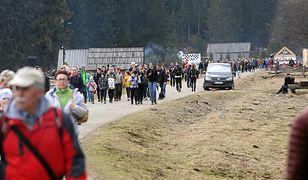 Tłumy turystów w Dolinie Chochołowskiej. Ludzie przyjechali oglądać kwitnące krokusy.