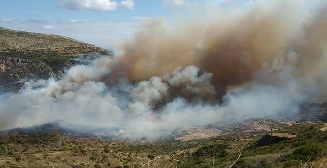 Strażacy na greckiej wyspie Kefalonia walczą z pożarami od środy