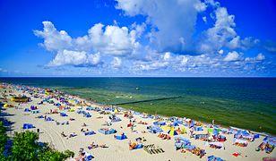 Sinice nad Bałtykiem – 30 lipca 2019. Sprawdź, czym są sinice, jakie są obawy zatrucia i jaki jest dziś stad wód nad polskim morzem