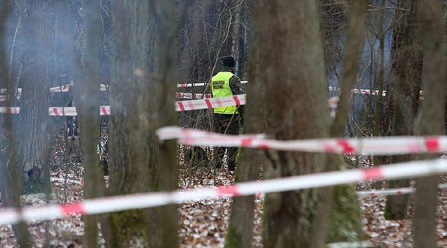 Miejsce katastrofy polskiego myśliwca