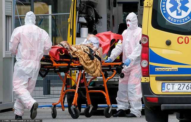 Epidemia odcisnęła piętno na wszystkich - mówi w rozmowie z WP Prezes Stowarzyszenia Młodych Lekarzy Rodzinnych/ Zdjęcie ilustracyjne