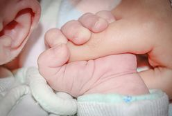 Niedożywione niemowlę z Gliwic w szpitalu. Rodzice zatrzymani