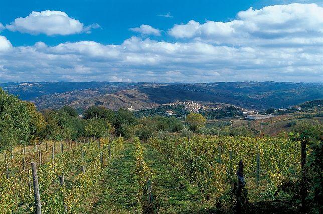 Castropignano znajduje się jedynie 150 km od Neapolu
