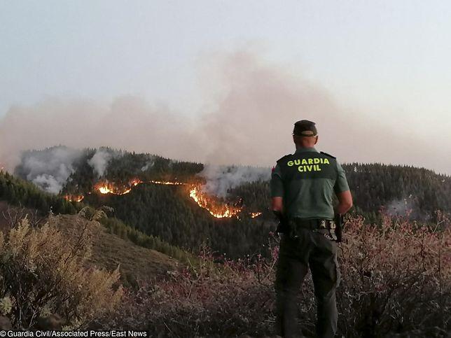 Powodem ewakuacji jest pożar lasu