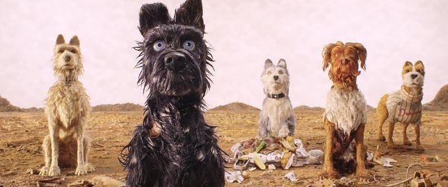 """""""Wyspa psów"""": nowy film Wesa Andersona zasługiwał na więcej [RECENZJA BLU-RAY]"""