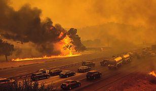 """Pożary w USA. """"14 tys. strażaków to wciąż za mało"""". W Kalifornii trwa walka z żywiołem"""