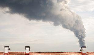 Jakość powietrza w Polsce. Smog trzyma się dobrze