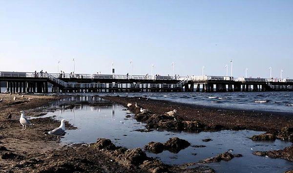 Wyniki kontroli NIK: fatalna ochrona brzegów morskich