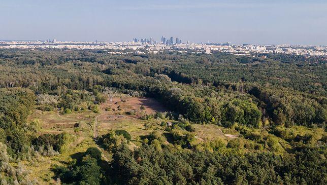 Warszawa. Wszczęto śledztwo ws. budowy w otulinie rezerwatu