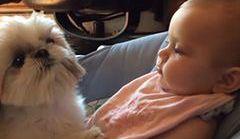 Wielka miłość psa i dziecka