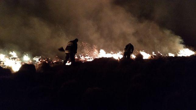 Nadal płonie Biebrzański Park Narodowy. Ogień strawił już ponad 1200 hektarów