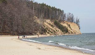 Piach rozsypany na plaży ma osłabić siłę fal uderzających w urwisko.