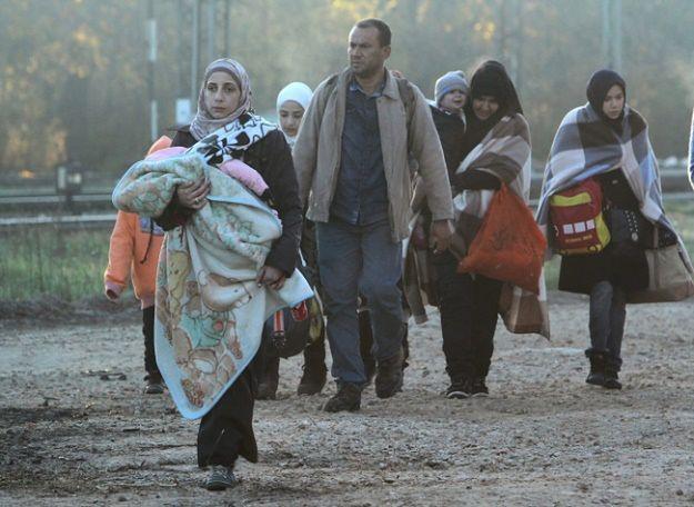 62 proc. Francuzów sprzeciwia się przyjmowaniu imigrantów