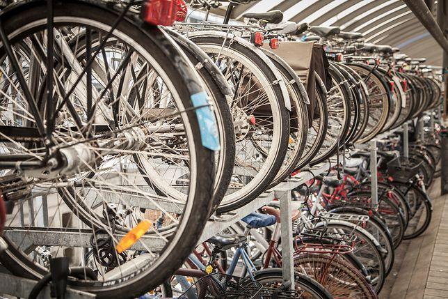 Jakie cechy powinien posiadać dobry rower?