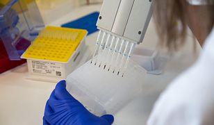 Koronawirus. Badania nad iwermektyną. Eksperci o końcu pandemii COVID-19