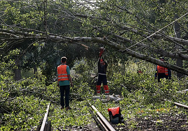 Burze powaliły drzewa. Pociągi utknęły w nocy - zdjęcia