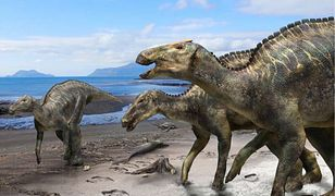 Dinozaur, który przeszedł ocean? Naukowcy odkryli coś, czego nie potrafią wyjaśnić