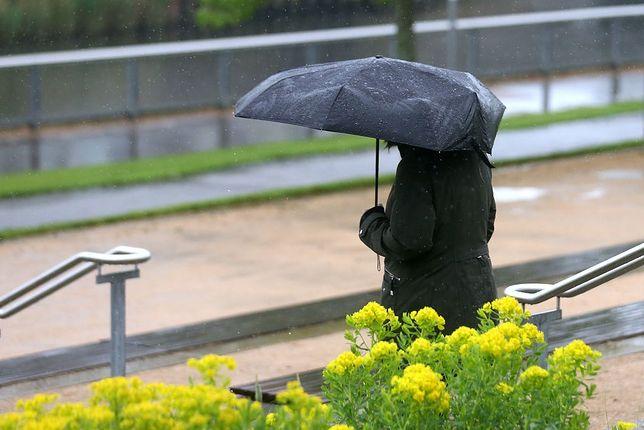 To był najzimniejszy i najbardziej deszczowy kwiecień od lat