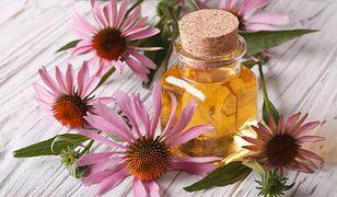 Olejek lawendowy na bazie lawendy wykorzystywany jest w kosmetologii zarówno dzięki właściwościom pielęgnującym, jak i leczniczym.
