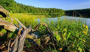 Jezioro Jasne (Czyste). Najbardziej przejrzyste jezioro w Polsce