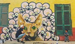 Kair - dzięki Polakom biedna dzielnica zyskuje nowe oblicze
