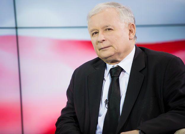 PiS zwiększył elektorat. Skąd wzięli się jego nowi wyborcy?