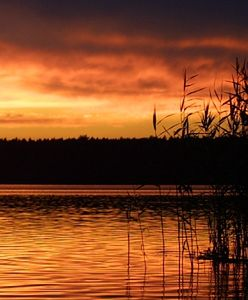 Jezioro Sulejowskie do likwidacji?