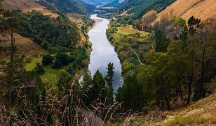Po raz pierwszy w historii rzeki uznano za żywe istoty. Mają te same prawa, co człowiek