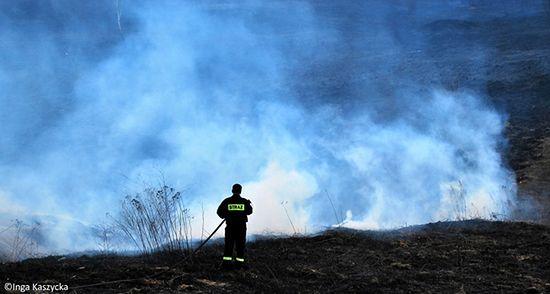 Masowe podpalenia w Polsce - zdjęcia