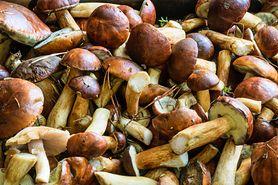 Zatrucie grzybami - objawy, pierwsza pomoc, leczenie
